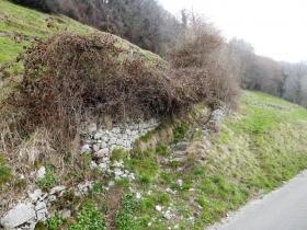 2018-04-08 Pizzo Cerro e Castel Regina 005