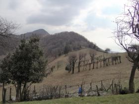 2018-03-25 Valle del Giongo (48)
