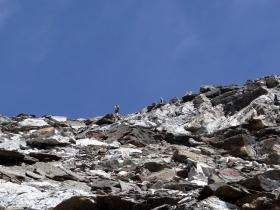 2017-08-03 Punta di Lasa Orgelspitze (53)