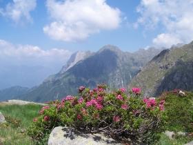 cima Terrefredde dalla val Braone, 1-lug-2006 (11)