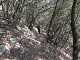 2018-04-22 sentiero degli Scaloni Dro Ceniga (163)