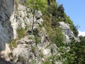 2018-04-22 sentiero degli Scaloni Dro Ceniga (182)