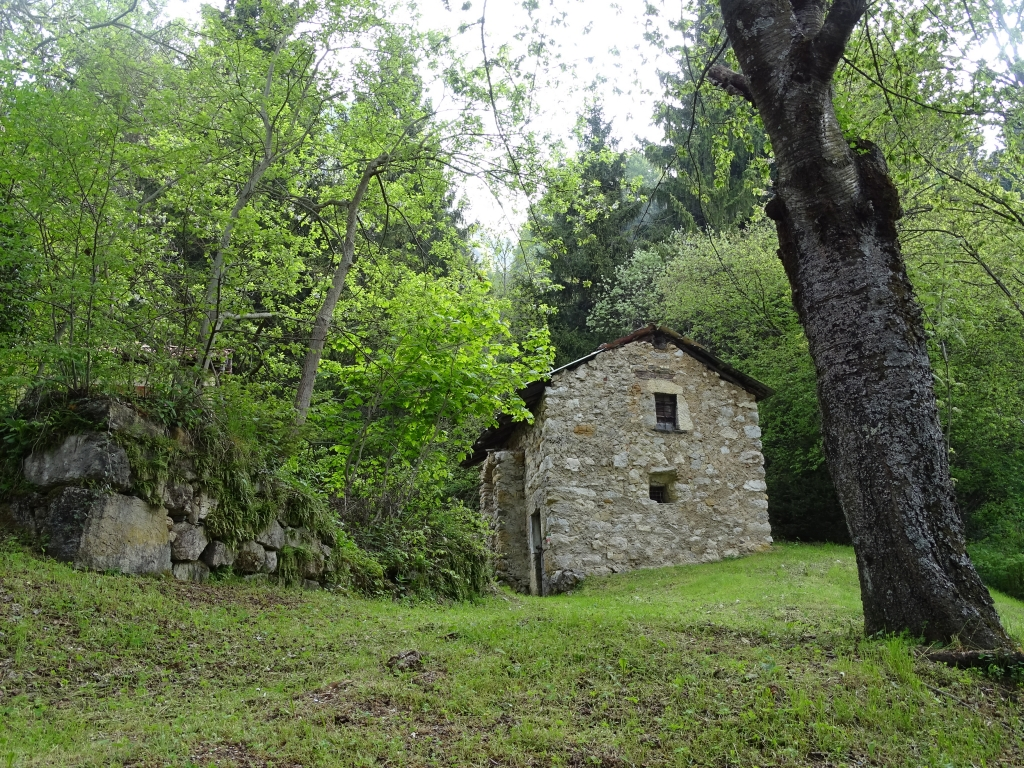 2016-05-18 Ghigozzo Pratolungo (12)