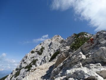 05 2014-06-14 cima Valdritta Baldo 021