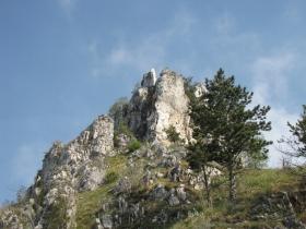 2009-05-10 cima tignalga (74)