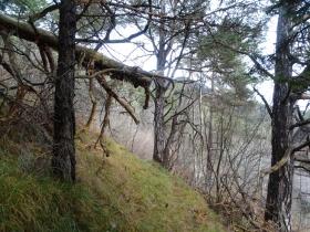 2016-11-20 monte Stigolo (15)