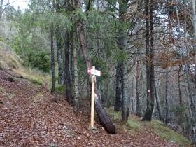 2016-11-20 monte Stigolo (19)