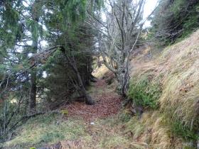 2016-11-20 monte Stigolo (22)
