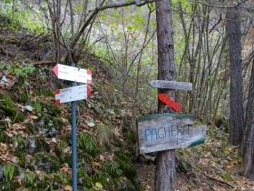 2016-11-20 monte Stigolo (39)
