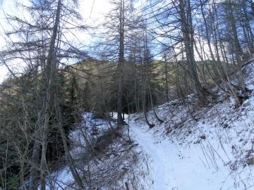 2018-12-09 malga Gatto da Ronchi (35)
