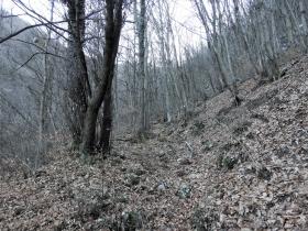 2018-01-13 Rul della Saetta valle Traversante Collio (17)