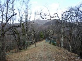 2018-01-13 Rul della Saetta valle Traversante Collio (31)