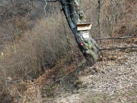 2018-01-13 Rul della Saetta valle Traversante Collio (39)