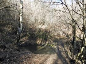 2018-01-13 Rul della Saetta valle Traversante Collio (47)