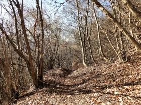2018-01-13 Rul della Saetta valle Traversante Collio (51)