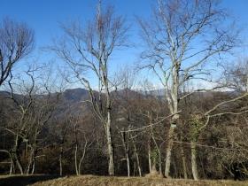 2018-01-13 Rul della Saetta valle Traversante Collio (55)