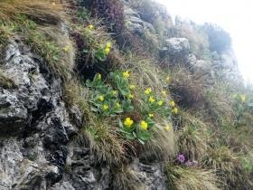 2018-05-20 monti Venturosa e Cancervo (53)