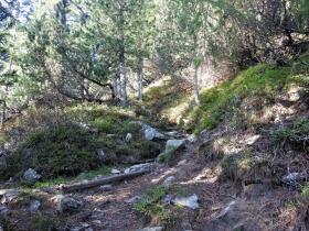 2018-09-29 Radelspitze cima Rodella (17)