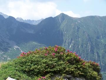 01 cima Terrefredde dalla val Braone, 1-lug-2006 (14)