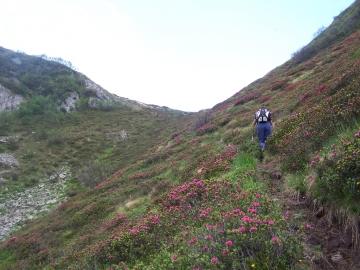 03 cima Terrefredde dalla val Braone, 1-lug-2006 (2)