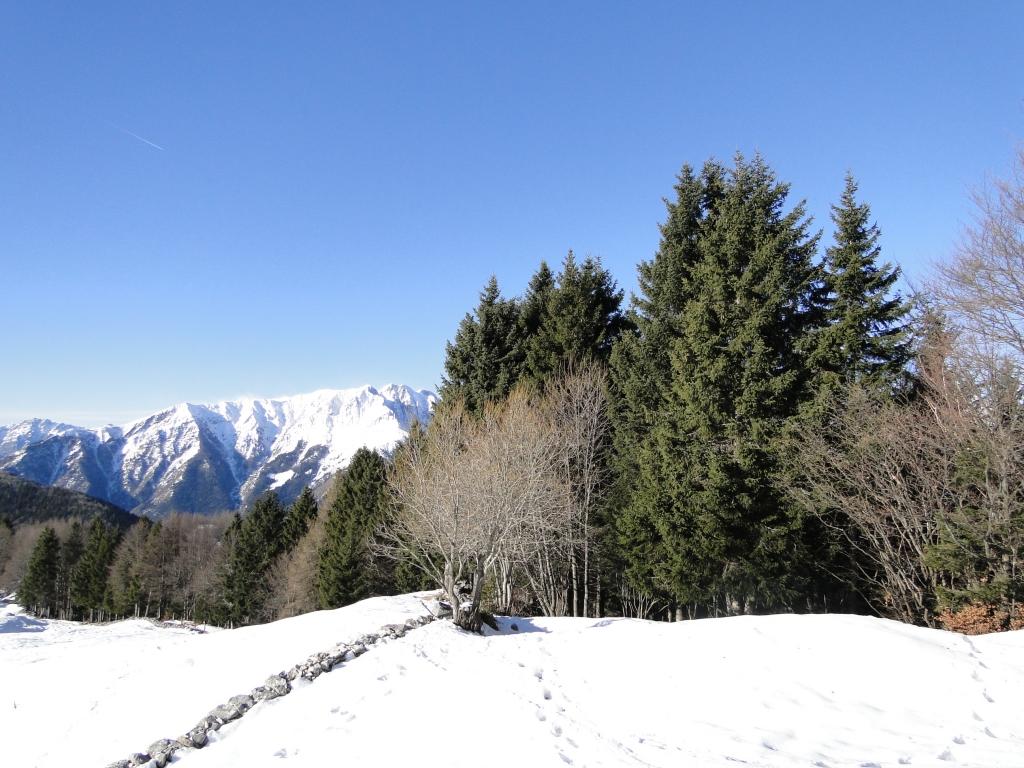 12 2012-12-28 spigla_remescler 002