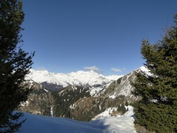 22 2012-12-28 spigla_remescler 009
