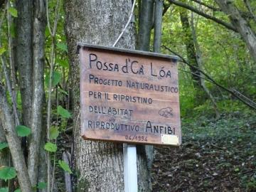 04 2015-10-25 Santamaria di Leten val Dossana 025