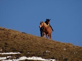 2013-12-11 monte Grem (3)