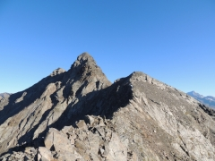 anticima Sud del monte Gavia