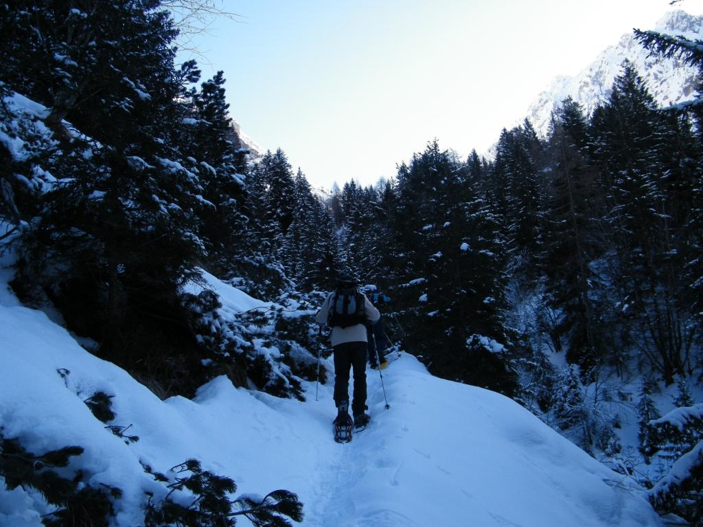 12 2010-02-21 Alpe Bruseda 011