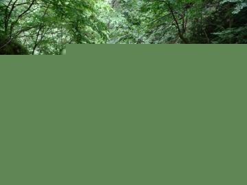 2019-06-23 bocchetta di Tortavai (57)