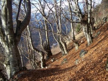 2006-12-16 passo del Frate(12).jpg