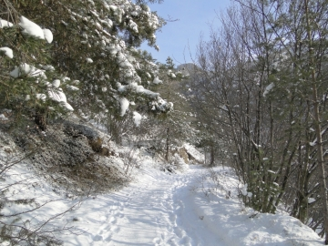 02 2012-02-04 Campei de Sima 002