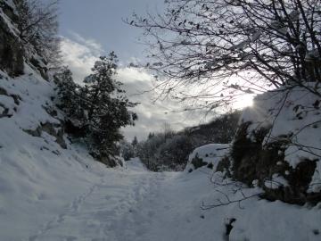 04 2012-02-04 Campei de Sima 004