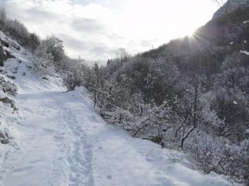 06 2012-02-04 Campei de Sima 006