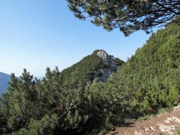 2019-07-21 Carega x il 108 (36)
