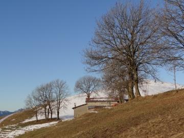 2012-12-30 Blum Fare' Rovetta 003