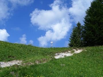 2019-06-16 cima Gavrdina dal Faggio (18)