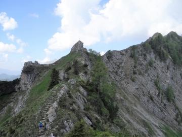 2019-06-16 cima Gavrdina dal Faggio (36)