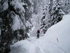 cima Pissola (con neve)