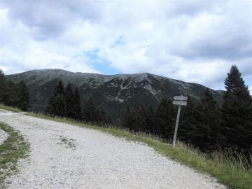 2019-07-13 cima Portule 91