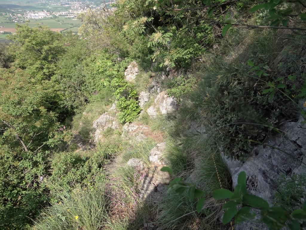 2018-05-06 Cordespino_ Castel Presina (20)