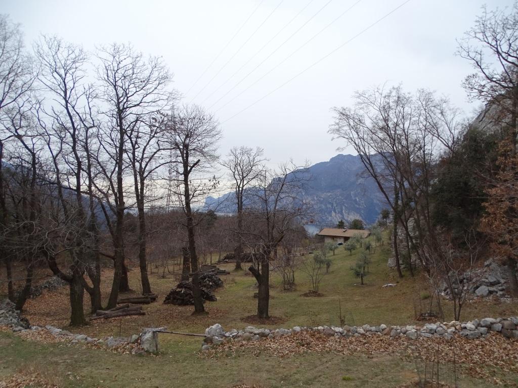 2020-02-29-Corno-di-Nago-20