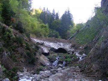 01 2009-05-20 Valle dei Concei 011