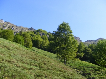 02 2009-05-20 Valle dei Concei 014