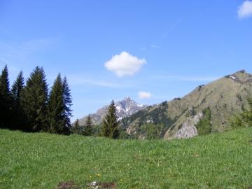 08 2009-05-20 Valle dei Concei 018