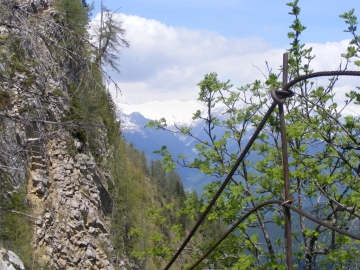 20 2009-05-20 Valle dei Concei 032