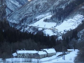 01 2012-12-15 neve Valzurio caprioli 001