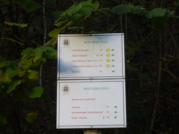 00 2015-10-25 Santamaria di Leten val Dossana 010