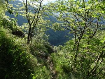 18 2014-05-18 monte Golla e rifugio (3)
